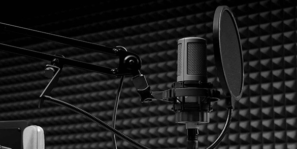 Professional Voice Overs